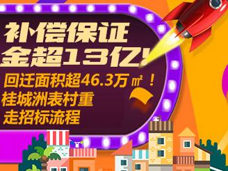 桂城洲表村重走招标流程