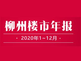 柳州楼市年报·2020